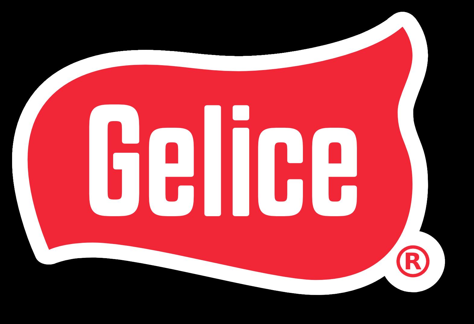 Venta de máquinas de helado en México